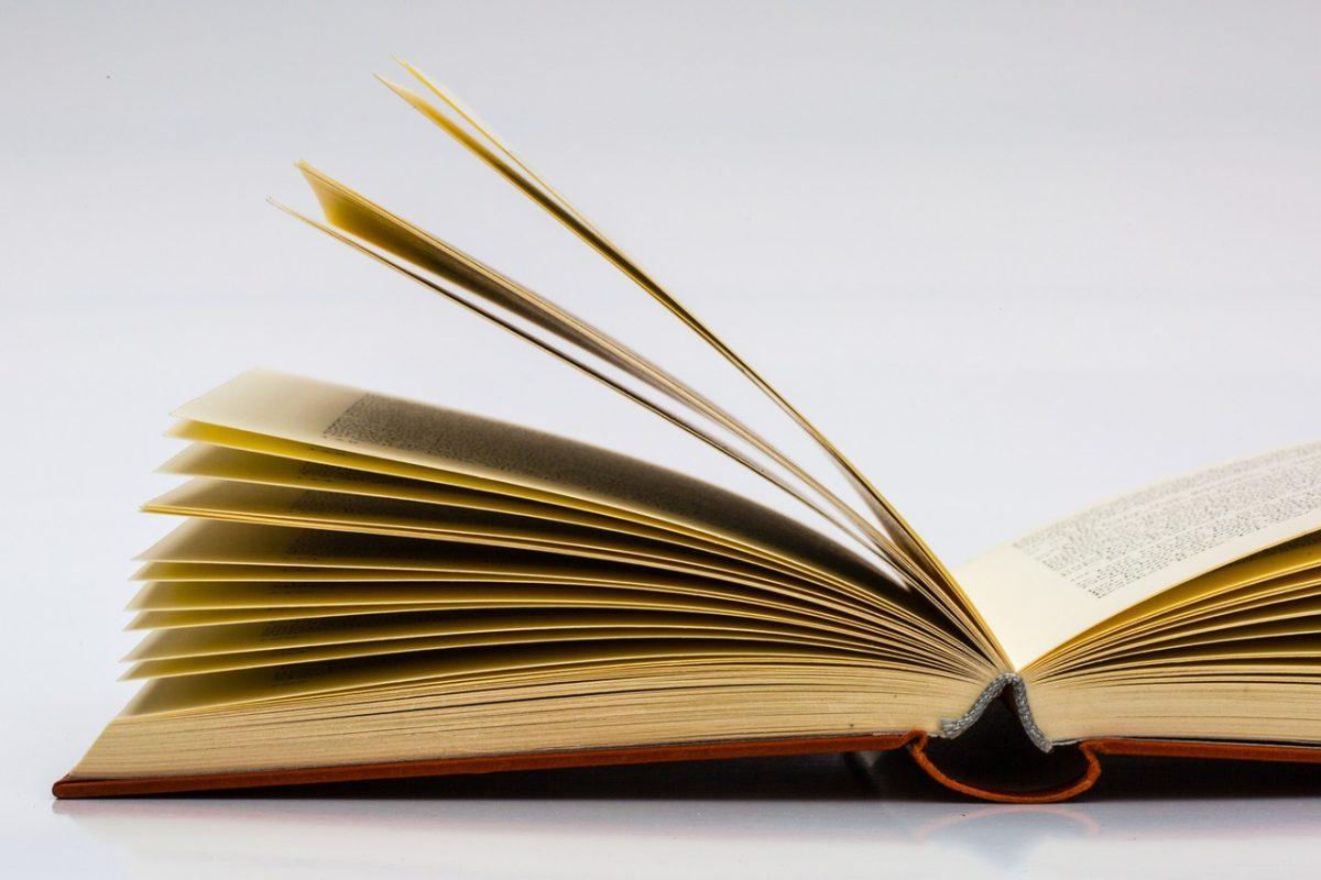Il comune eroga 524 contributi per l 39 acquisto di libri di for Libri acquisto online sconti