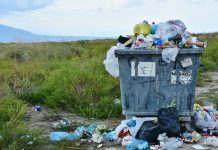 Zanardi sul tema rifiuti nel centro città