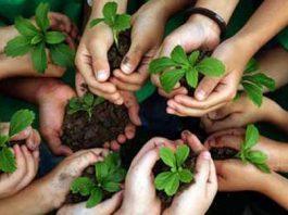 Educazione ambinetale, unione Iren e Comune Fiorenzuola