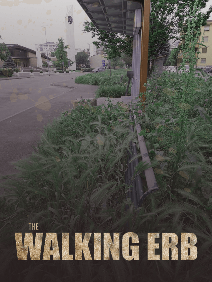 The Walking Erb – Il ritorno