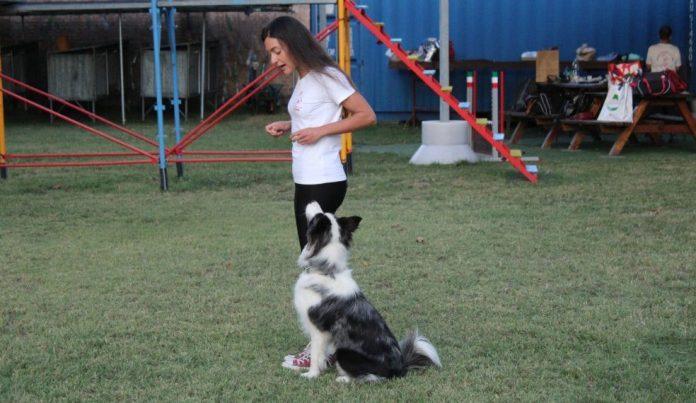 La storia di Blu ed Eleonora ai Mondiali per cani da soccorso a Parigi